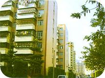 龙口市梁家煤矿住宅小区10万平方米(外墙涂料)